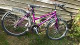 adult's bike - £40