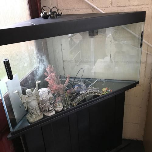Corner fish tank and stand for sale for sale in newmarket for Corner fish tank for sale