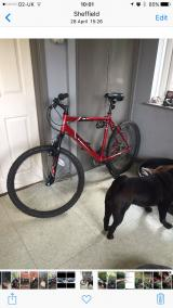 Men's mountain bike for sale Slightly faulty. - £20 no offers