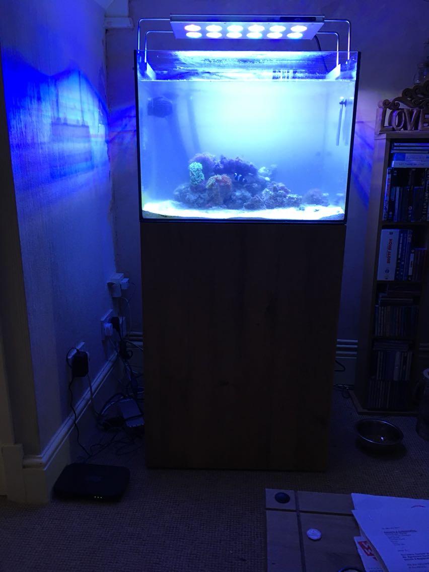Oak fish tank for sale in uk 64 used oak fish tanks for Used fish tanks for sale