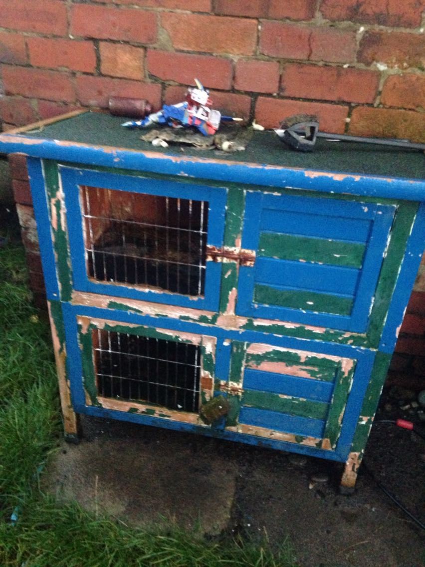 3 Tier Rabbit Hutch for sale in UK | View 41 bargains