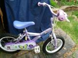 "14""Apollo Petal Children Bike - £35"