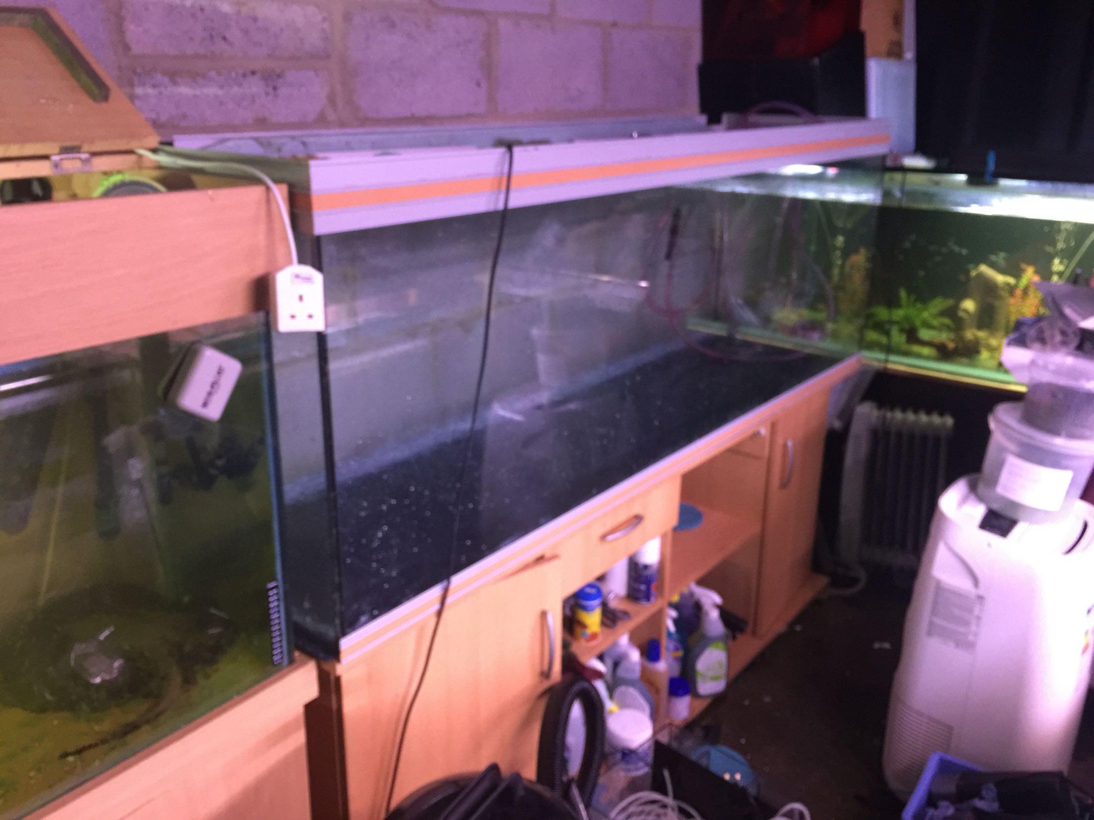Aquarium 5ft for sale in uk 42 used aquarium 5fts for Aquarium for sale uk