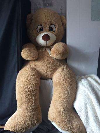 big teddy bears for sale in uk 97 used big teddy bears. Black Bedroom Furniture Sets. Home Design Ideas