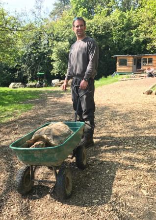 Image 3 of Tortoise Rescue Centre