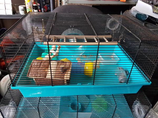 Image 1 of Hamster cage £15