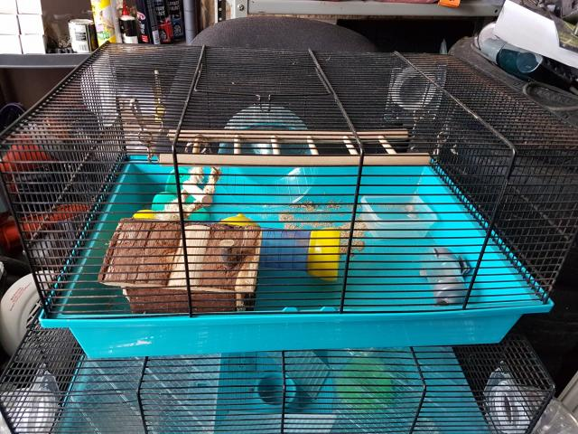 Preview of the first image of Hamster cage £15.