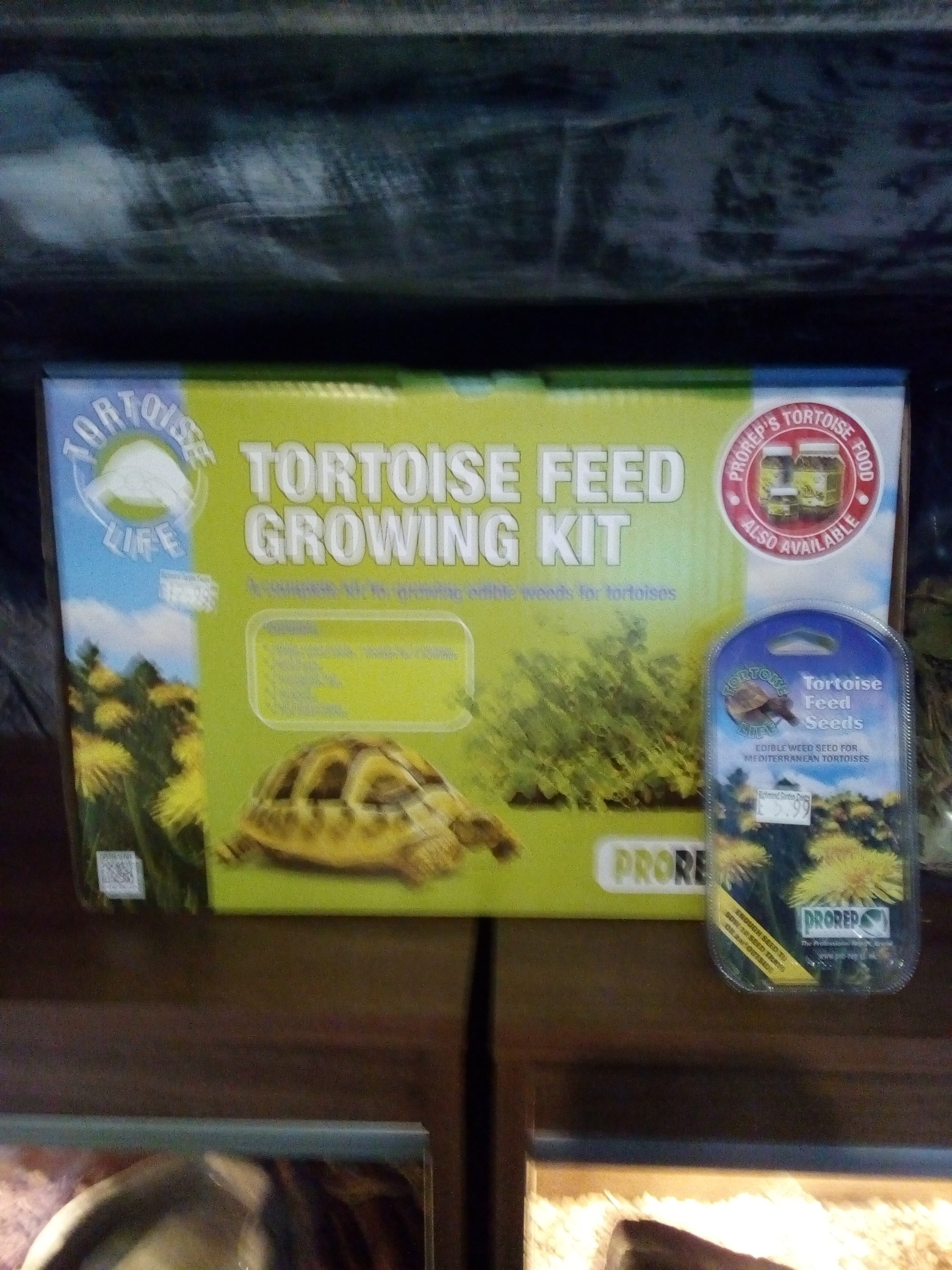 tortoise feed growing kit and seeds