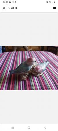 Image 2 of Fielding Of Staffordshire Love Birds Figure