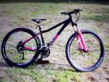 Mountain Bike - £250 ono