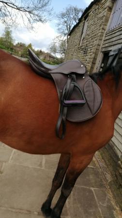 Image 3 of Brown Saddle