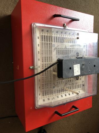 Image 1 of Novital incubator