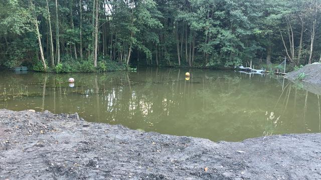 Preview of the first image of Pond fish and plants wanted pond clearance fish wanted.
