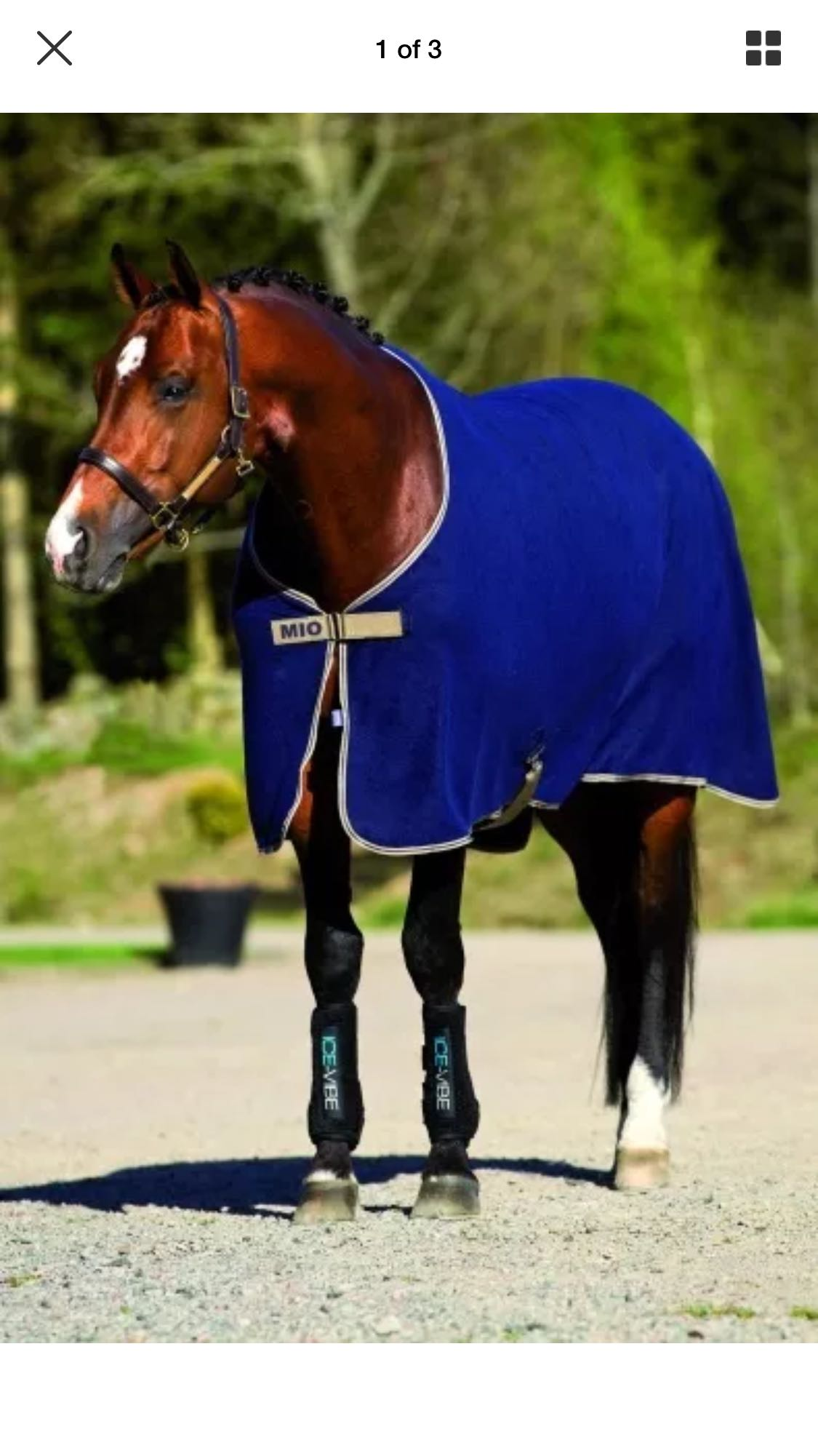 Amigo headcollar amp travel rug - Walesby, Newark, Notts - All new never used Rug 6'6 headcollar full not as blue in real life more navy! - Walesby, Newark, Notts