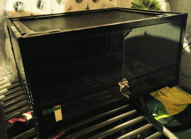 Preview of the first image of Black Terrarium Tank.