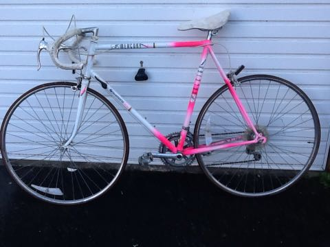 Vintage raleigh for sale thanks