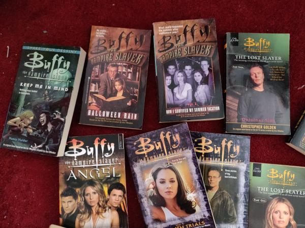 Image 8 of Buffy the Vampire Slayer Collection bundle