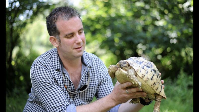 Image 1 of Tortoise Rescue Centre