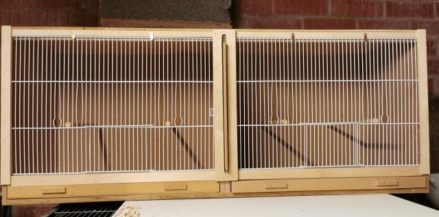 Preview of the first image of Double Finch Cages,.