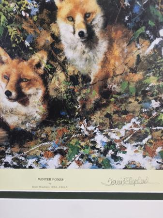Image 2 of Winter Foxes by David Shepherd signed limited edition