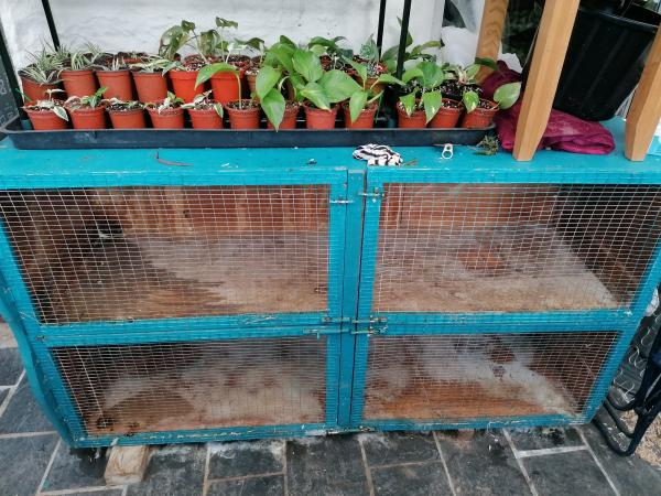 Image 1 of Double Hutch