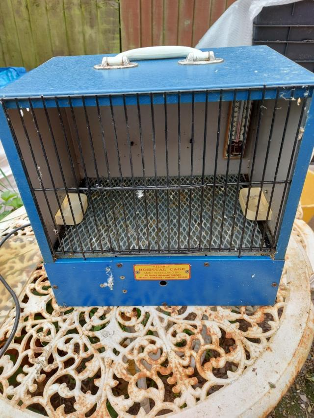 Preview of the first image of bird hospital cage.