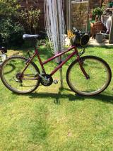 Ladies bicycle for Sale - £40