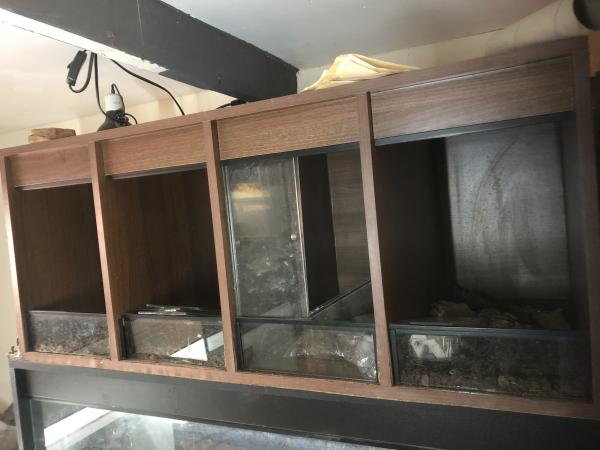 Image 1 of Reptile vivarium 4 way