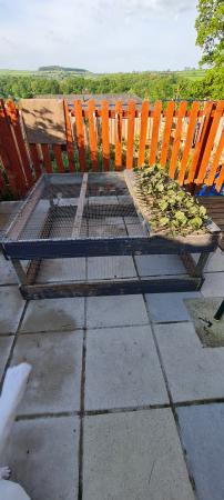 Image 3 of Outdoor Run For Rabbits /Guiinipig Ferret