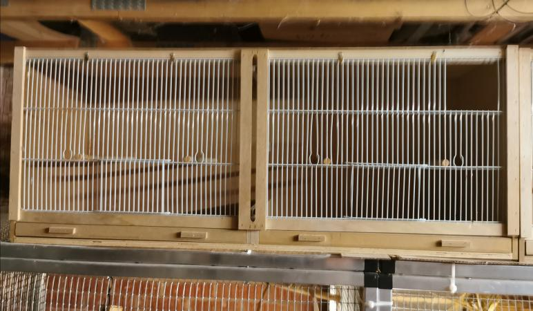 Image 2 of Double Finch Cages,
