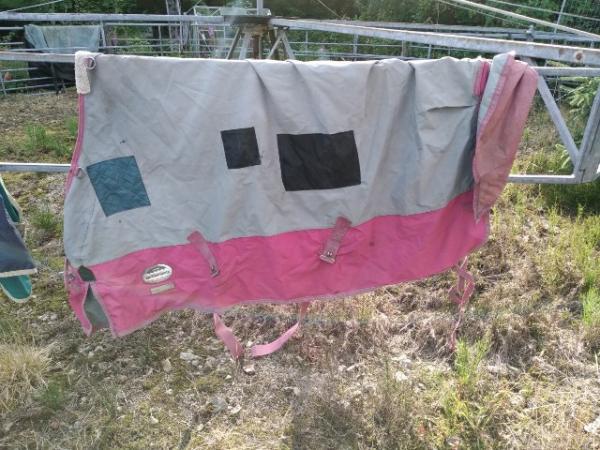 Image 2 of Weatherbeeta Landa lightweight turnout rugs
