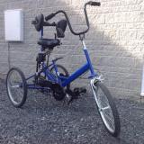 Tomcat Fizz Trike with Trailer & Step - £1,800