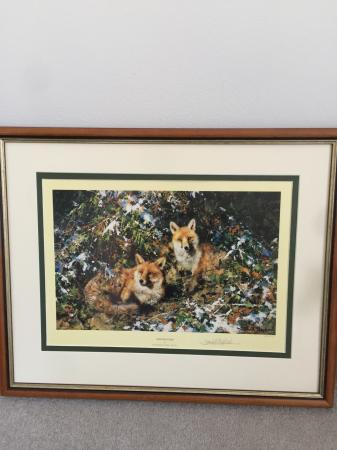 Image 1 of Winter Foxes by David Shepherd signed limited edition
