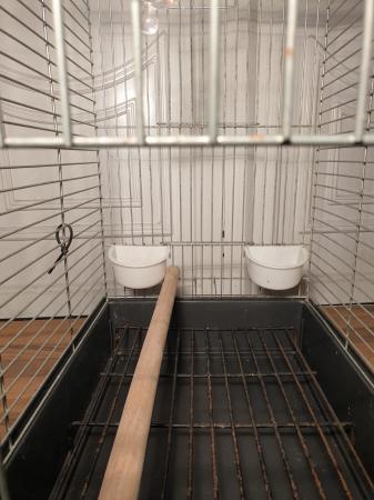 Image 4 of bird cage