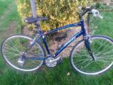 Specialized Vita Elite Woman's Road Bike - £165