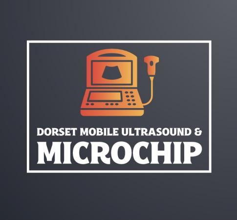 Image 1 of Microchip and pregnancy ultrasound