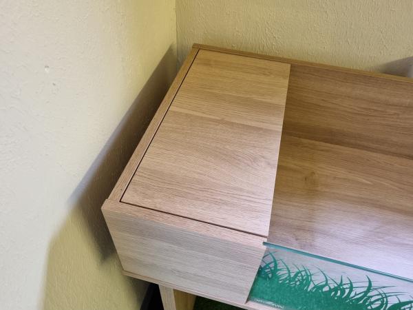 Image 3 of tortoise table