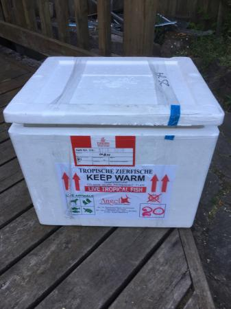 Fish transport polystyrene box