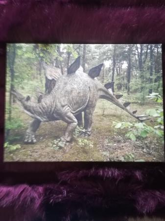 Image 1 of Dinosaur canvas pictures