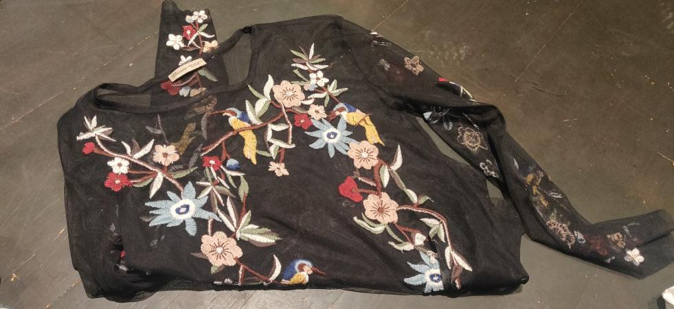 Image 1 of Zara Size S Sheer Embroidered Top