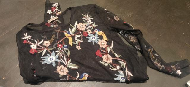 Preview of the first image of Zara Size S Sheer Embroidered Top.