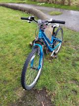 ridgeback Destiny mountain bike - £30