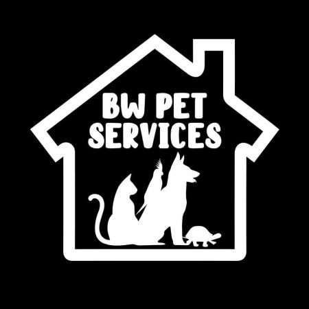 Image 1 of Dog walking, pet sitting and additional pet services