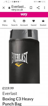 Image 3 of heavy Duty Everlast punch Bag.
