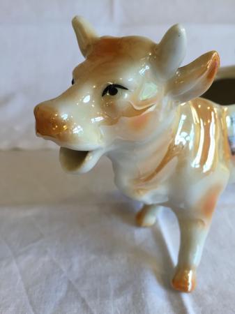 Image 3 of Cow creamer jug - 'Welsh costume' souvenir - perfect