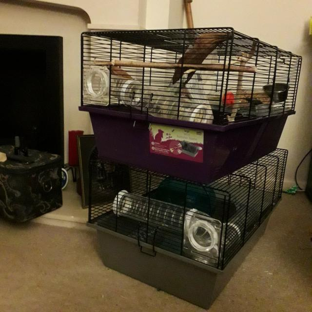 Preview of the first image of 2 hamster cages and tubes..