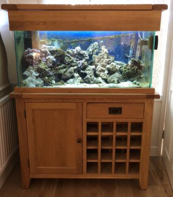 Second Hand Marine Fish Tanks Local Classifieds For