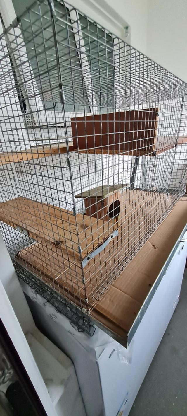 Preview of the first image of Indoor Cage For/Ferret /Rat Chinchilla.